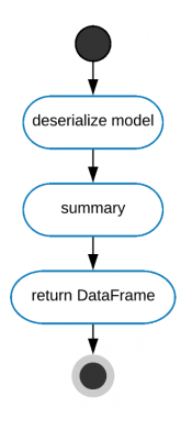 This image shows a running process diagram for the summary command.